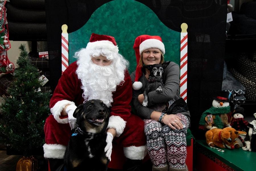Santa-Photos-597